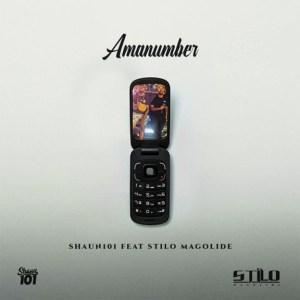 Shaun101 - AmaNumber ft. Stilo Magolide